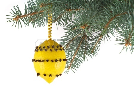 16755289-lemon-with-cloves--christmas-toy