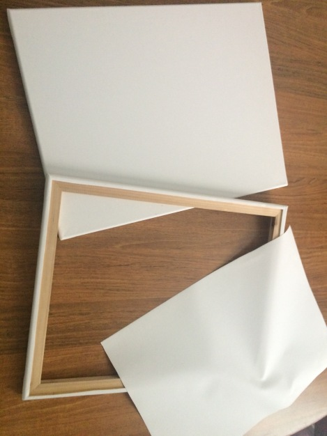 We used inexpensive canvas frames and cut out the canvas material.